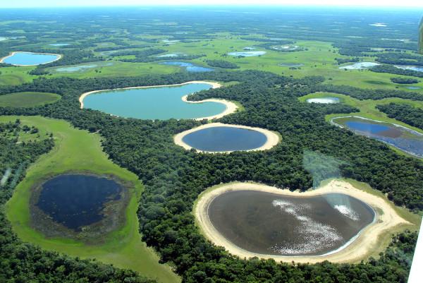 Com o relevo plano, áreas alagadas são comuns no Pantanal.