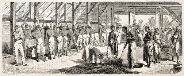 A proposta de Dantas procurava acabar com a escravidão no Brasil em até 16 anos.