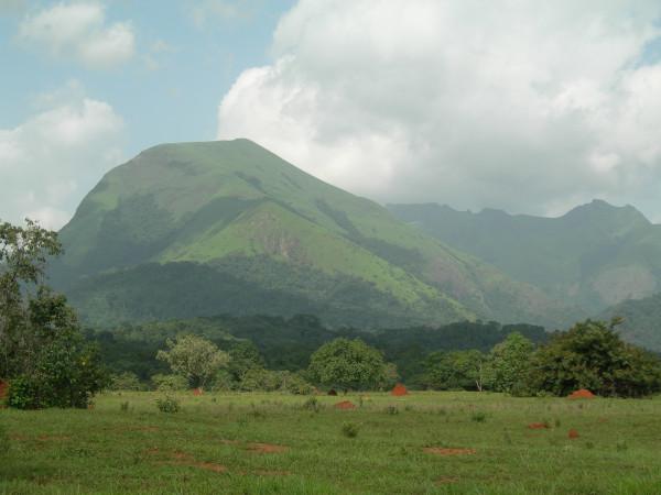 O Monte Nimba é a maior elevação da Guiné. [1]