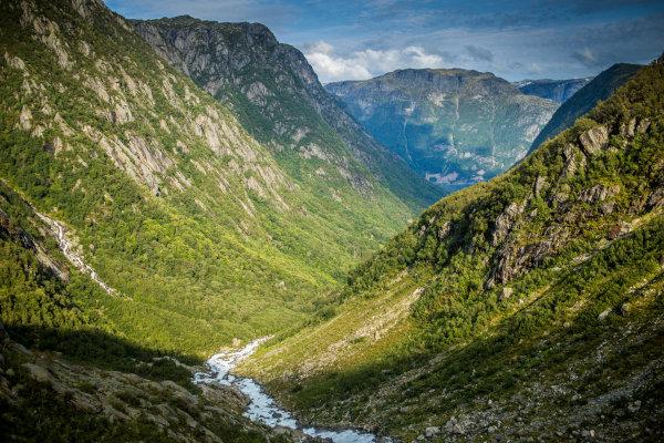 As paisagens naturais são compostas de elementos da natureza que não foram alterados pela ação humana.