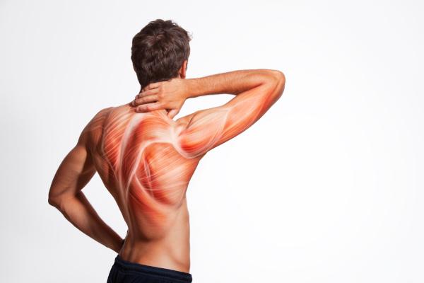 Rigidez e dor muscular de início abrupto após a ingestão de pescado podem indicar síndrome de Haff.