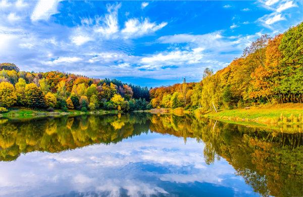 Paisagem típica do outono em uma região temperada.