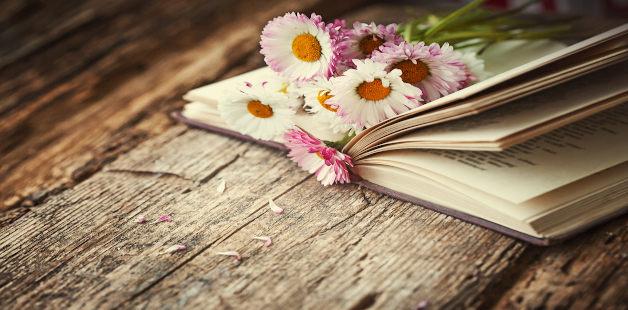 Livro e rosas em mesa de madeira