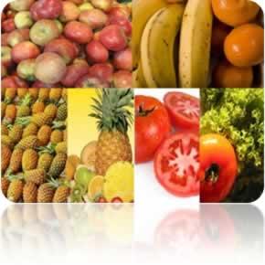 O consumo di�rio de frutas e verduras evita a obesidade