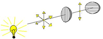 79bae62bdcbd6 Polarização de ondas. Estudo da polarização de ondas - Brasil Escola