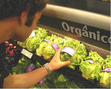 Os alimentos orgânicos são uma categoria de produtos específicos