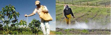 Uso de fertilizantes e os agrotóxicos