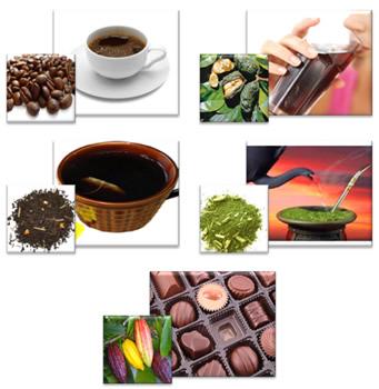 Alimentos e bebidas que são as principais fontes de cafeína