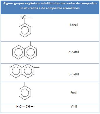 Grupos orgânicos substituintes derivados de compostos insaturados e de aromáticos