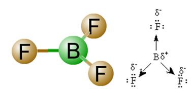 Momento dipolar do BF3, uma molécula apolar.