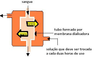 Esquema de um tubo formado por membrana dialisadora usado em hemodiálise