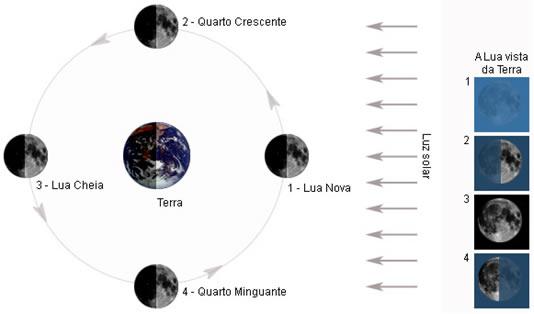 668b37249 Na posição 1, temos a fase de Lua nova, em que a face voltada para a Terra  não está iluminada, portanto, a Lua não pode ser vista.