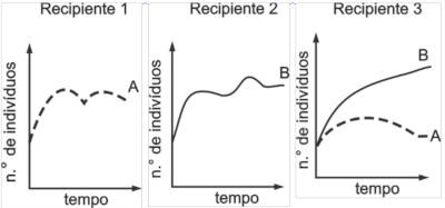 Gráficos com números de insetos em cada recipiente em função do tempo