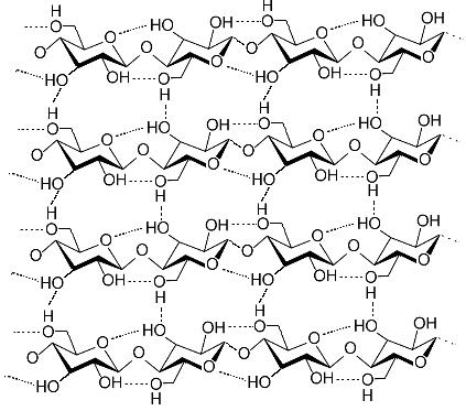 Ligações de hidrogênio entre moléculas que compõem o polímero da celulose*
