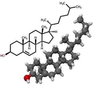 esteroides testosterone cypionate