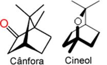 Cânfora e cineol - monoterpenos capazes de impedir que outras espécies de plantas se desenvolvam no chaparral