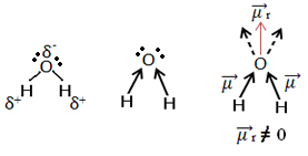 Vetor do momento dipolar resultante da molécula de água