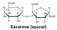 Estrutura da sacarose (glicose + frutose)