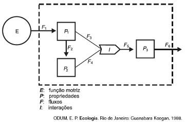 Modelo de um sistema de interações entre seres vivos.