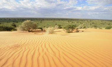 Paisagem do Deserto do Kalahari, em um ponto no norte da África do Sul
