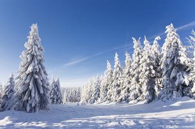 Área de uma montanha, com clima típico