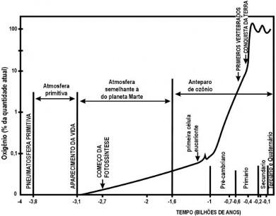 Analise cuidadosamente o gráfico acima