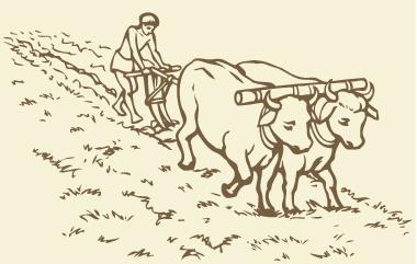 A utilização do meio natural foi marcante em sociedades tradicionais