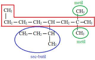 Ramificações em composto orgânico