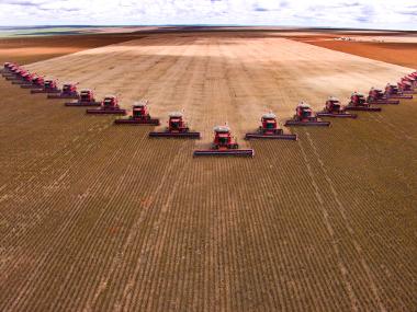 Área de ocupação do Cerrado no Mato Grosso para o cultivo da soja em larga escala *