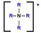 Fórmula estrutural do cátion amônio com seus hidrogênios substituídos por radicais orgânicos