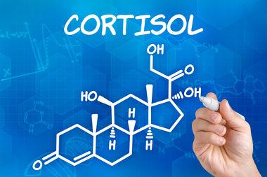 Fórmula estrutural em perspectiva do cortisol