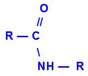 Fórmula geral de uma amida monossubstituída