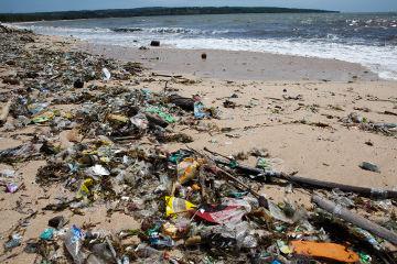 A crescente produção e a destinação indevida de resíduos sólidos têm causado a poluição da água em todo o mundo