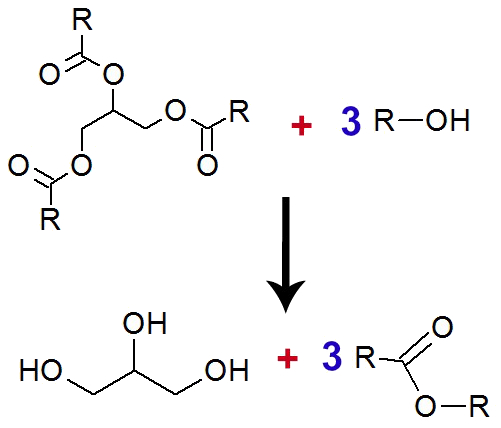 Equação de formação do glicerol a partir do ácido graxo