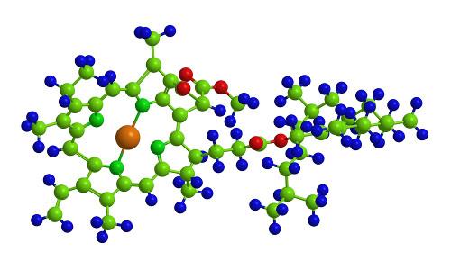 A figura acima representa a estrutura da clorofila a, um importante pigmento da fotossíntese