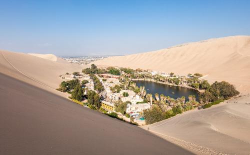 Os oásis são formações que ocorrem no deserto em decorrência do afloramento do lençol freático