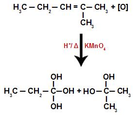 Rompimento do alceno e posicionamento de hidroxilas