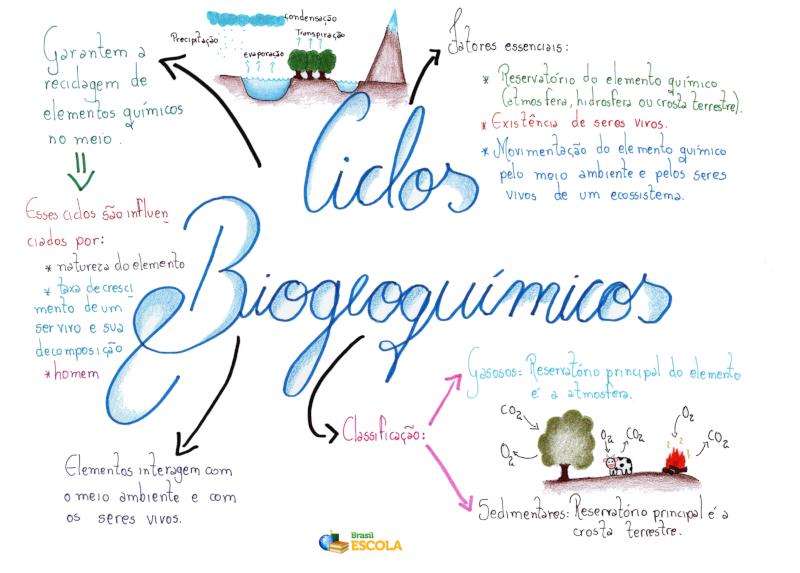 Ciclos biogeoquímicos - Brasil Escola
