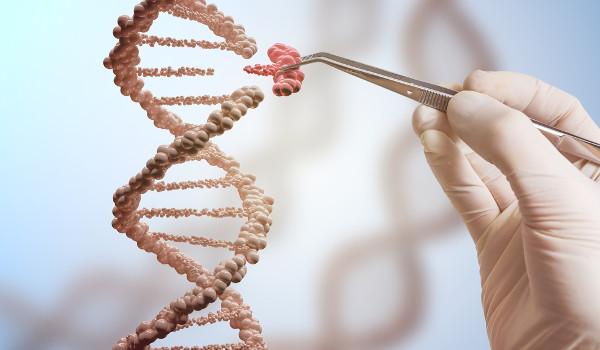 Edição genética