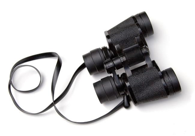 O binóculo é formado por lentes objetivas, oculares e prismas inversores.