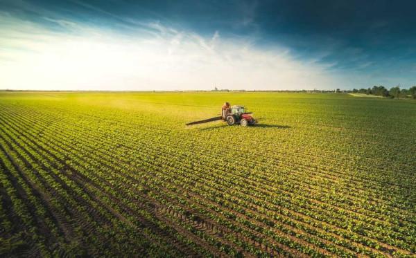 A agricultura representa o cultivo de espécies vegetais. Pode ser realizada em latifúndios e voltar-se para a exportação.