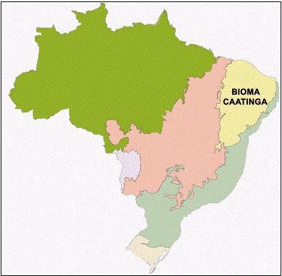 Localização da Caatinga no Brasil