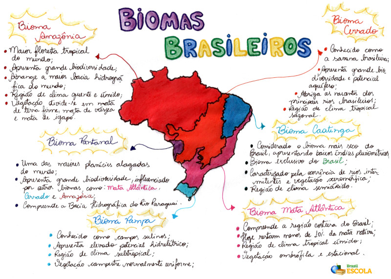 Biomas Brasileiros Resumo Mapa Mental Fauna E Flora Brasil Escola