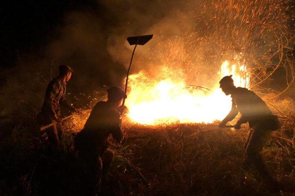 Equipe tenta apagar queimadas no sudoeste do Pará. [1]